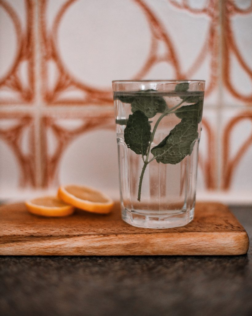 A glass of water with mint and orange slices floating in it